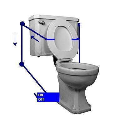 toilet seat lifter.JPG